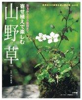 9784091034960: Yoseue de tanoshimu san yaso�? : kokedama kara mini bonsai made Shiki oriori no fuzei o hakobu no no kusa yama no hana