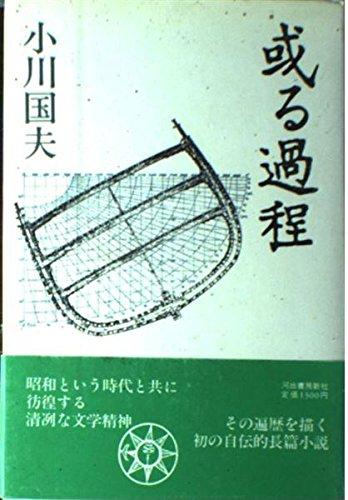 9784309005232: Aru katei (Japanese Edition)