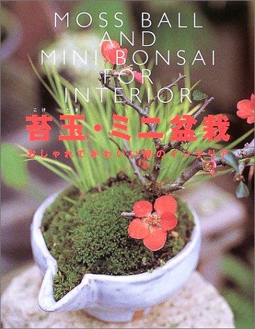 9784405085459: Kokedama mini bonsai : oshare de kawaii midori no interia
