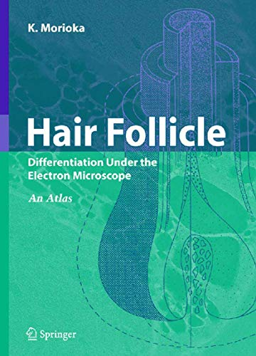 9784431224297: Hair Follicle: Differentiation under the Electron Microscope - An Atlas