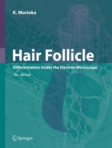 9784431998051: Hair Follicle: Differentiation under the Electron Microscope - An Atlas