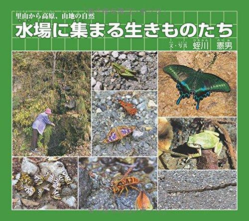 9784434121524: Mizuba ni atsumaru ikimonotachi : Satoyama kara kōgen sanchi no shizen