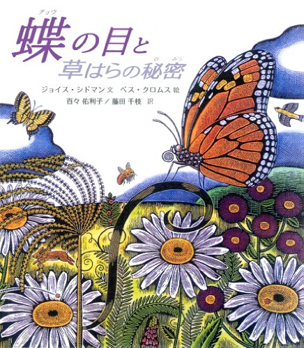 Butterfly Eyes and Other Secrets of the Meadow (Hardback): Joyce Sidman