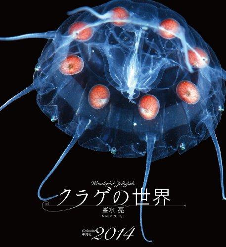 9784582645682: World of jellyfish (2014 calendar) (japan import)