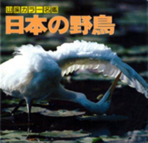 Wild Birds of Japan: Takano, Tsuyako et al