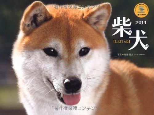 9784635845236: Shiba Inu (Yamakei Calendar 2014 Yama-Kei Calendar 2014) (japan import)