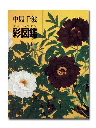 9784763000439: Nakajima chinami iroiro zukan.