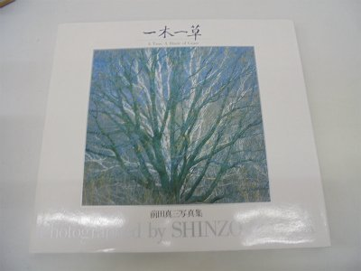 9784766102789: Tree a Blade of Grass (English and Japanese Edition)