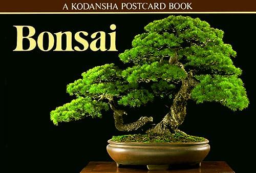 Bonsai: A Kodansha Postcard Book (Kodansha postcard books): Kodansha