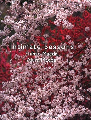Intimate Seasons: Shinzo Maeda, Akira