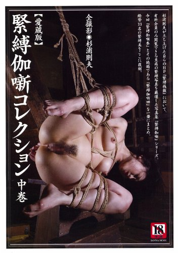 Japanese bondage book