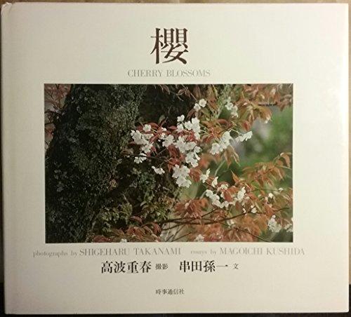 Cherry Blossoms: Magoichi Kushida