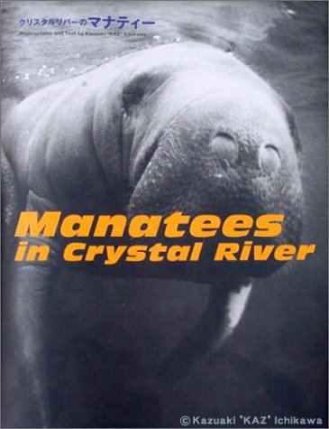 9784847013614: Manatees in Crystal River