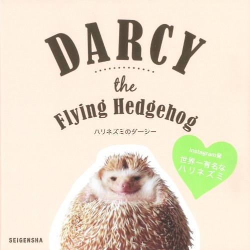 9784861524288: Darcy the Flying Hedgehog (English and Japanese Edition)