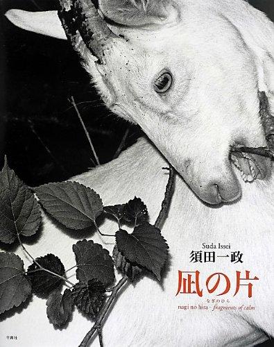 Nagi no hira = Fragments of calm: Issei Suda