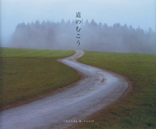 9784894442122: Beyond the Road (Michi No Mukou)