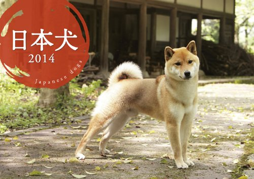 9784895311540: Japanese dog Calendar 2014 (Calendar) (japan import)