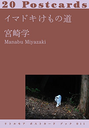 9784898154021: Manabu Miyazaki - Animal Trails Today. 20 Postcards
