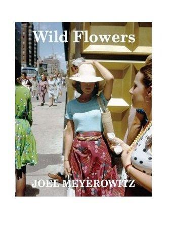 9784905052005: Wild Flowers