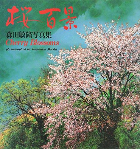 9784906371396: Cherry Blossoms
