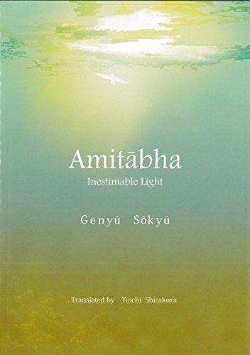 9784990866907: Amitabha Inestimable Light