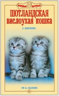 9785423801700: Shotlandskaya vislouhaya koshka