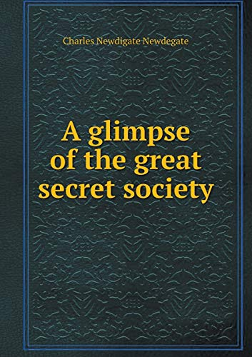 9785519131308: A glimpse of the great secret society