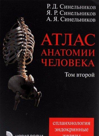 9785786402583: Atlas anatomii v 4-kh tomakh t.2. izd. 7-e pererab.