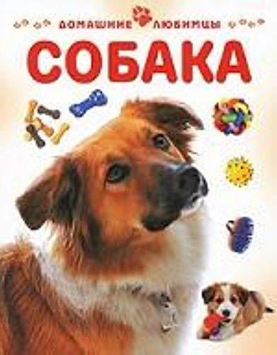 9785944641748: DOG / SOBAKA