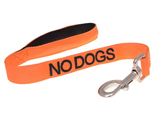 9786041022195: NO DOGS Orange Color Coded 2 Foot Short Padded Dog Leash (Not Good With Other Dogs) PREVENTS Accidents By Warning Others of Your Dog in Advance