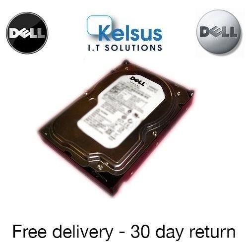9786042641791: DELL 73 GB HDD 10 K SAS 6,35 cm X160K en caja ORIGINAL - totalmente limpió (hd44)