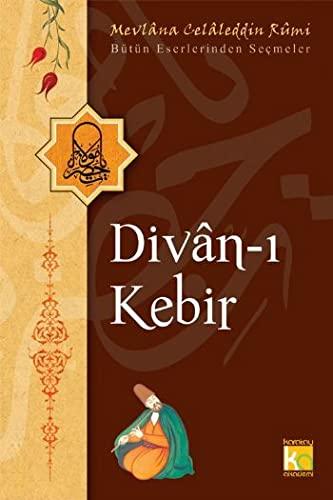 9786051130798: Divan-i Kebir