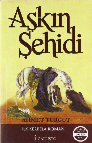 9786056236426: Askin Sehidi