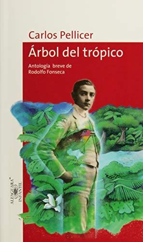 Árbol del trópico / Tropical tree: Pellicer, Carlos