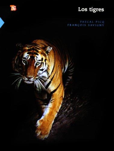 9786071600639: Los tigres (Ciencia Y Tecnologia) (Spanish Edition)