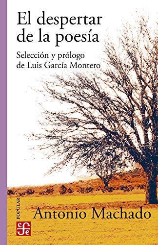 El despertar de la poesÃa: Antonio Machado