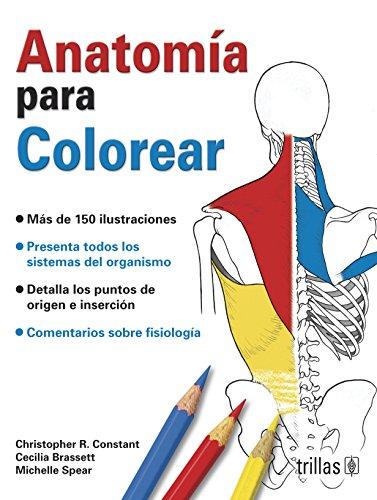 anatomia colorear - Iberlibro