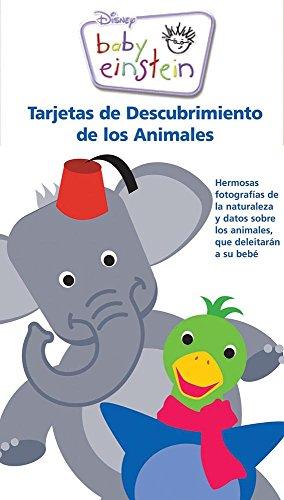 9786074045147: Baby Einstein Tarjetas de Descubrimiento De los Animales / Baby Einstein Animal Discovery Cars