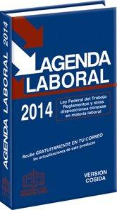 9786074064315: agenda laboral 2013