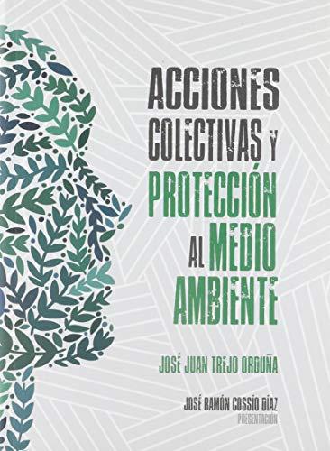 9786075242262: Acciones colectivas y protección al medio ambiente