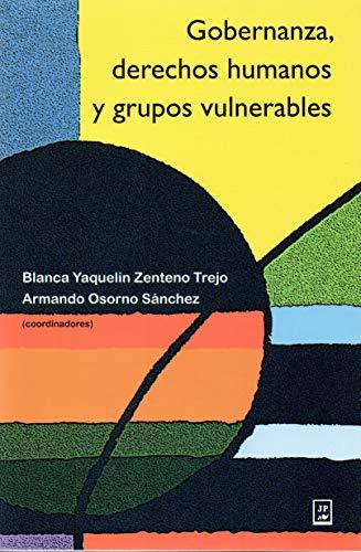 9786077113041: GOBERNANZA DERECHOS HUMANOS Y GRUPOS VULNERABLES