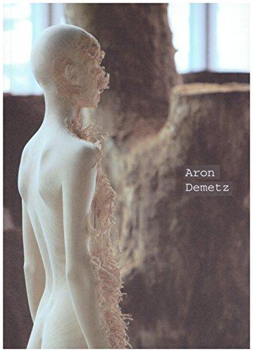 9786078111053: Aron Demetz Terreno Baldio