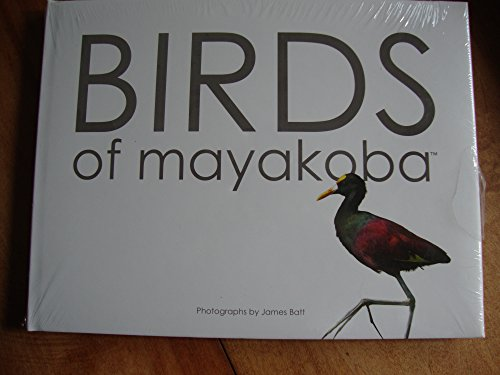 9786079549114: Birds of Mayakoba