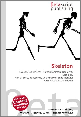 9786130351502: skeleton: biology, exoskeleton, human skeleton, Skeleton