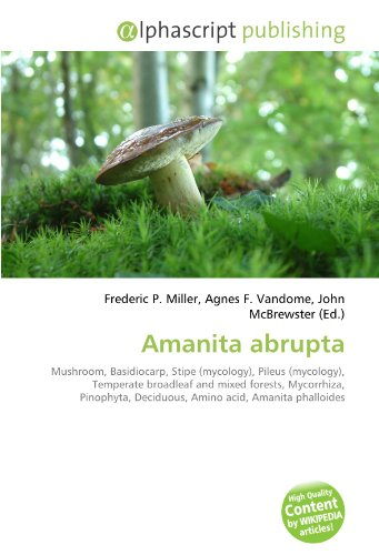 9786130640118: Amanita abrupta: Mushroom, Basidiocarp, Stipe (mycology), Pileus (mycology), Temperate broadleaf and mixed forests, Mycorrhiza, Pinophyta, Deciduous, Amino acid, Amanita phalloides