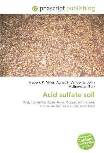 9786130734824: Acid sulfate soil