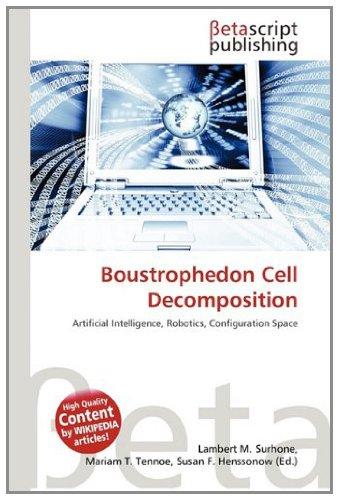 9786131387241: Boustrophedon Cell Decomposition