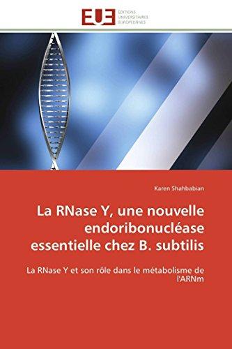 9786131511011: La RNase Y, une nouvelle endoribonucléase essentielle chez B. subtilis: La RNase Y et son rôle dans le métabolisme de l'ARNm