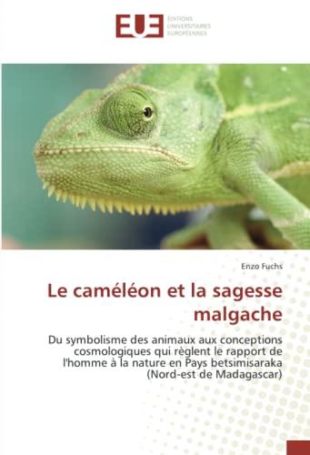 Le caméléon et la sagesse malgache: Enzo Fuchs