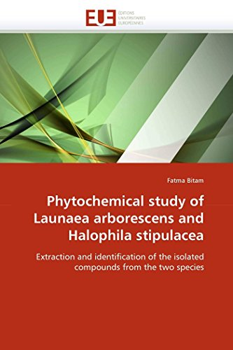 9786131544910: Phytochemical study of Launaea arborescens and Halophila stipulacea: Extraction and identification of the isolated compounds from the two species (Omn.Univ.Europ.)